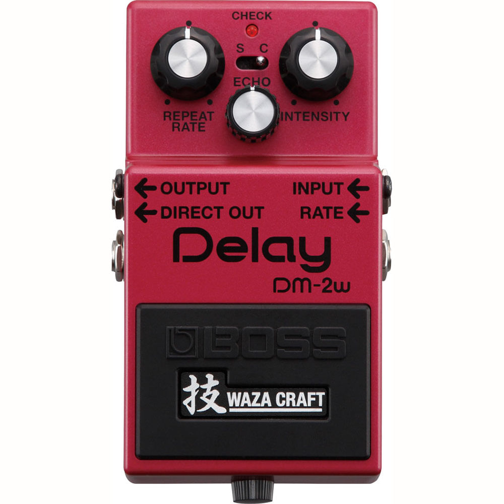 Pedal-Boss-Delay-DM-2W-.01